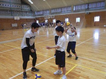 volley-2101.jpg