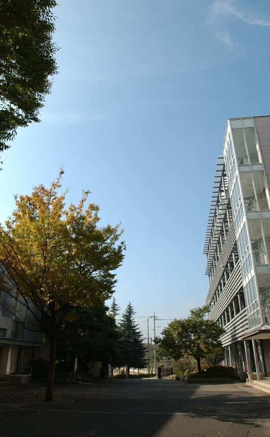 桐光学園中学校・高校の校舎外観(中庭)